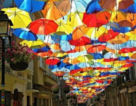 """Rực rỡ phố """"ô dù"""" ở Bồ Đào Nha"""